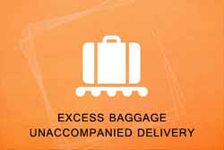 Excess Baggage Unaccompanied Delivery